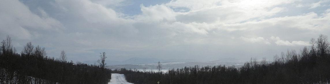 Södra Norrlands frilanssektion inom Journalistförbundet